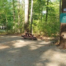 Tidewater Campground Site C3