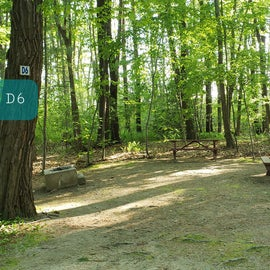 Tidewater Campground Site D6