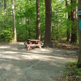 Tidewater Campground Site 14K