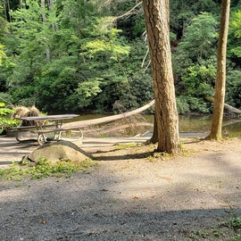 Creek side site
