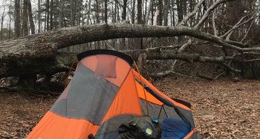 Savage Falls Camping Area