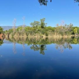 The east lagoon
