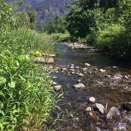 Cute stream that runs to the Columbia