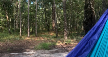 Halfway Creek - Dispersed Camping