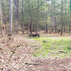 Lake Dennison Site 2