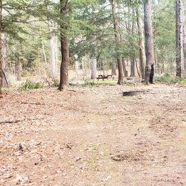 Lake Dennison Site 3