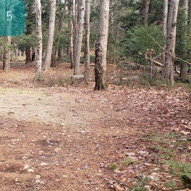 Lake Dennison Site 5