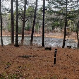 Lake Dennison Site 8