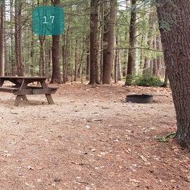 Lake Dennison Site 17