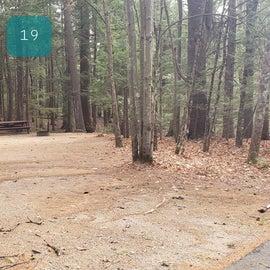 Lake Dennison Site 19