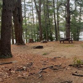 Lake Dennison Site 21
