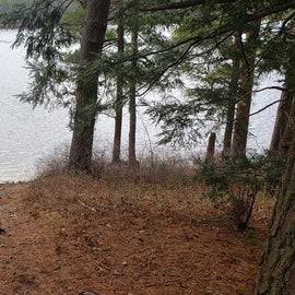 Lake Dennison Site 21 path to lake