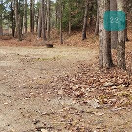 Lake Dennison Site 22