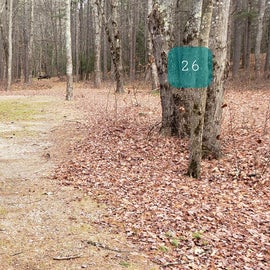 Lake Dennison Site 26