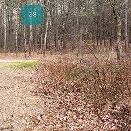 Lake Dennison Site 28