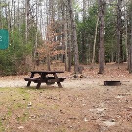 Lake Dennison Site 32