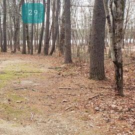 Lake Dennison Site 29
