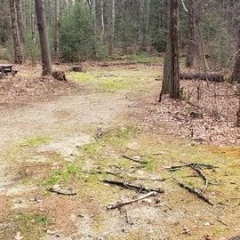 Lake Dennison Site 35