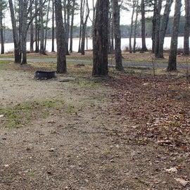 Lake Dennison Site 58