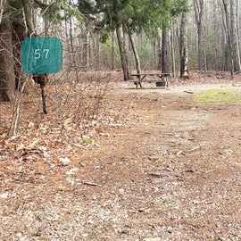 Lake Dennison Site 57
