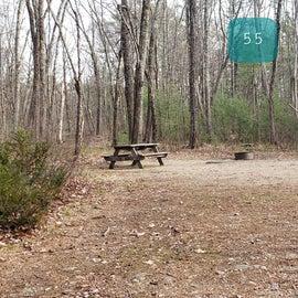 Lake Dennison Site 55