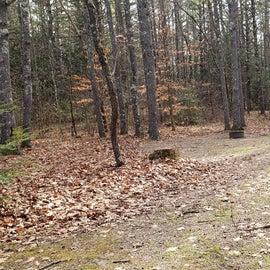 Lake Dennison Site 44