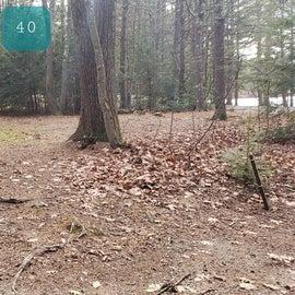 Lake Dennison Site 40