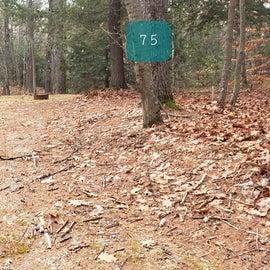 Lake Dennison Site 75