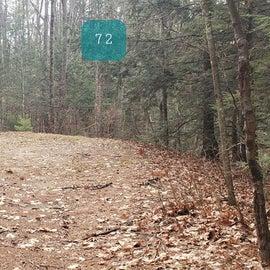 Lake Dennison Site 72