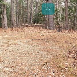 Lake Dennison Site 77