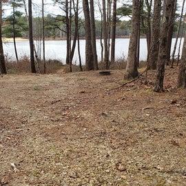 Lake Dennison Site 79