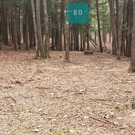 Lake Dennison Site 80