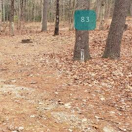 Lake Dennison Site 81