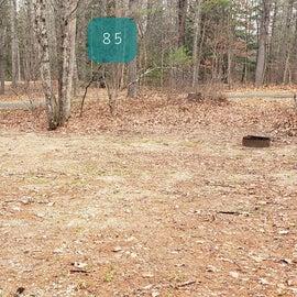 Lake Dennison Site 85