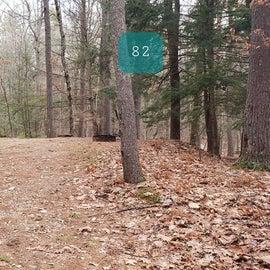 Lake Dennison Site 82