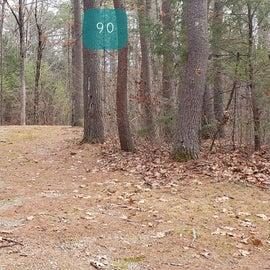 Lake Dennison Site 90