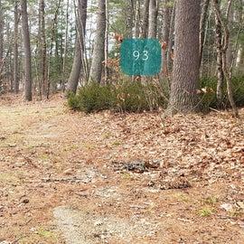 Lake Dennison Site 93