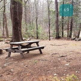 Lake Dennison Site 49