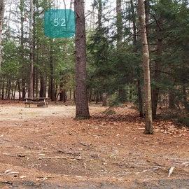 Lake Dennison Site 52