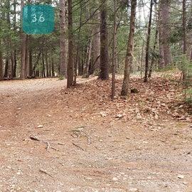 Lake Dennison Site 36