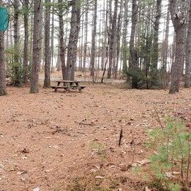 Lake Dennison Site 135
