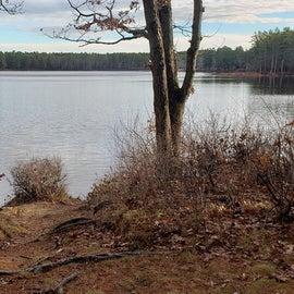 Lake Dennison Site 101