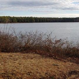 Lake Dennison Site 105