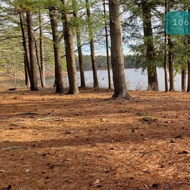 Lake Dennison Site 106