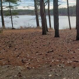 Lake Dennison Site 107