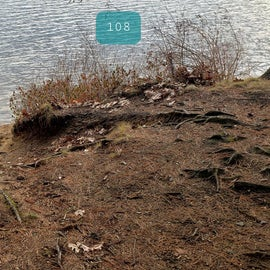 Lake Dennison Site 108