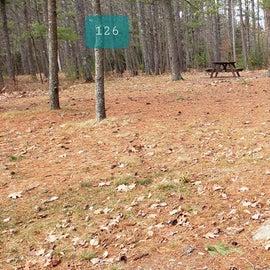 Lake Dennison Site 126