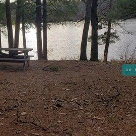 Lake Dennison Site 110
