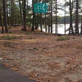 Lake Dennison Site 111