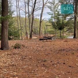 Lake Dennison Site 117